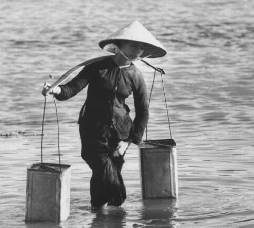 TP. Hồ Chí Minh: Quan trắc môi trường vùng nuôi tôm và nhuyễn thể